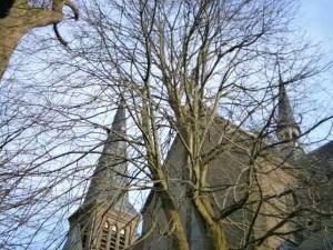Kathkerk